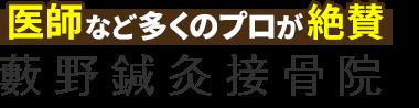足立区六町の整体なら「藪野鍼灸接骨院」 ロゴ